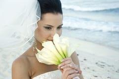 Het Caraïbische Huwelijk van het Strand - Brid Royalty-vrije Stock Foto