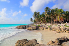 Het Caraïbische tropische turkooise strand van Tulum Mexico Stock Afbeelding