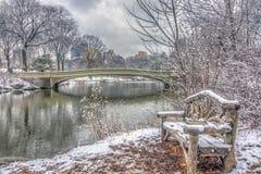Het Central Park van de boogbrug royalty-vrije stock foto's
