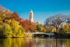 Het Central Park van de boogbrug in de Herfst Stock Afbeeldingen