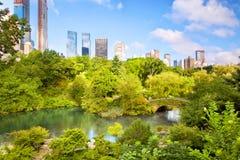 Het Central Park van Manhattan van de Stad van New York stock fotografie