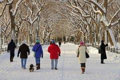 Het Central Park van New York na sneeuw Stock Fotografie
