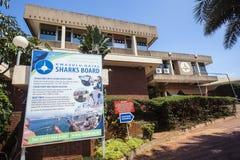 Het Centrum van de Gegevens van de Raad van haaien   Stock Fotografie