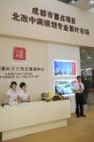 Het centrum van Expo van 1st CSITF (2012) Stock Fotografie