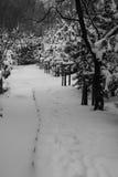 Het chalet en de cabine van de de winterski in sneeuwberg royalty-vrije stock foto's