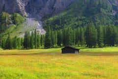 Het chalet van de berg stock afbeelding