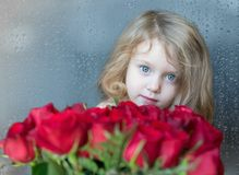 Het charmante blonde Kaukasische meisje kijken van achter rode rozen De natuurlijke regendruppels op het venster als achtergrond Stock Foto