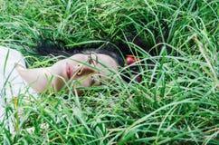 Het charmante meisje het brunette ligt op een groen gras op een open plek Haar ter plaatse Rode appelen in haar Het geheugen van  stock foto's