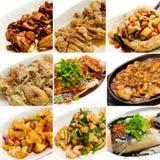Het Chinese Aziatische voedsel van de inzameling Stock Afbeeldingen