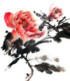 Het Chinese of Japanse inkt schilderen van pioenrozen stock illustratie