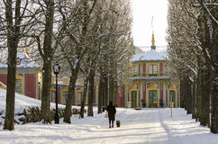 De Chinese wintertijd van het Paviljoen Royalty-vrije Stock Afbeeldingen