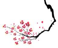 Het Chinese schilderen van pruim vector illustratie