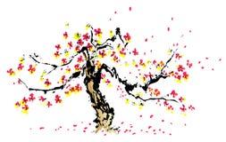 Het Chinese schilderen van sakura royalty-vrije illustratie