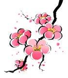 Het Chinese schilderen van sakura stock illustratie