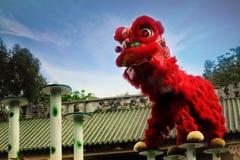 Het Chinese Traditionele leeuw dansen Stock Foto's