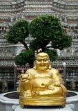 Het cijfer van Boedha in Wat Arun Stock Fotografie
