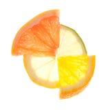 Het cijfer van de citrusvrucht Royalty-vrije Stock Afbeelding