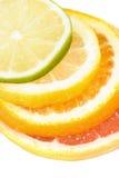 Het cijfer van de citrusvrucht Royalty-vrije Stock Foto's