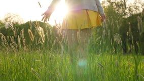 Het cijfer van de Silhuettevrouw wat betreft hand lang gras stock videobeelden
