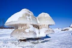 Het cijfer van het ijs Royalty-vrije Stock Foto's