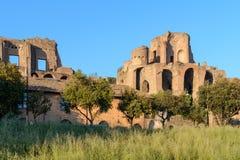 Het Circus Maximus in Rome stock foto
