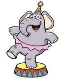 Het circus van de beeldverhaalolifant Stock Foto