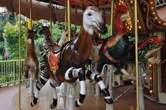 Het circus van het rendier Royalty-vrije Stock Afbeeldingen