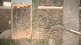 Het cirkel scherpe hout van de lijstzaag in de zaagmolen stock videobeelden