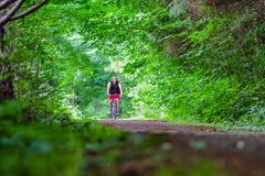 Het cirkelen in bos op fietsproef Stock Fotografie