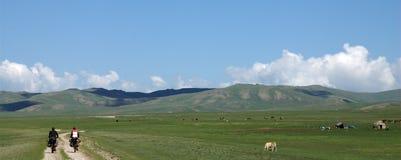 Het cirkelen in Kyrgyzstan stock afbeelding