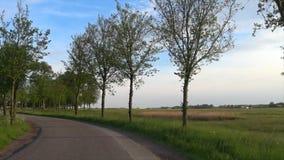 Het cirkelen op een windende landweg stock videobeelden