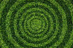 Het Cirkelpatroon van het gras. royalty-vrije stock foto