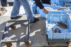 Vissers die bij de verschepende boot werken Royalty-vrije Stock Foto