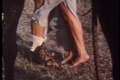 Het close-up van benen als vrouw bevindt zich op tiptoe terwijl het kussen van de mens stock video
