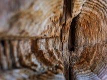 Het close-up van de houten textuur van de Raadsoppervlakte, oude houten achtergrond met barst, behandelde oud hout royalty-vrije stock fotografie