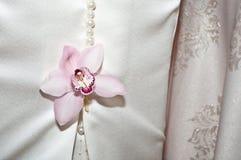 Het close-up van de orchideebloem Royalty-vrije Stock Afbeeldingen