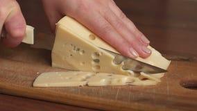 Het close-up van een vrouw sneed de kaas, langzame motie stock video
