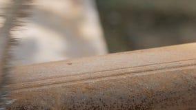 Het close-up van man dient het werkhandschoenen in, die de oude pijp van roest met een metaalborstel schoonmaken stock video