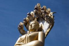 Het close-up van reuzeboedha gezet onder zeven leidde naga in Wat Tha Ton stock afbeelding