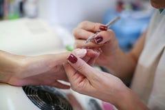 Het close-up van vrouwelijke handen die manicured zijn Stock Foto's