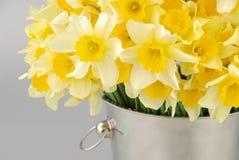 Het close-up van witte gele narcis bloeit, gekend als Paperwhite, Narcissenpapyraceus op groen grasgebied royalty-vrije stock foto