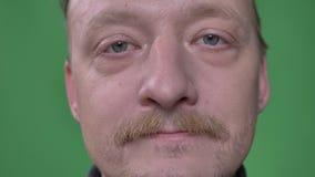 Het close-upportret van de Kaukasische mens op middelbare leeftijd met baard en snor glimlacht in camera op groene achtergrond stock footage