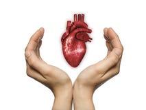 Het concept een gezond hart royalty-vrije illustratie