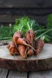 Het concept gezonde het eten wortelen Stock Afbeeldingen