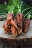 Het concept gezonde het eten wortelen Stock Fotografie