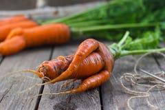 Het concept gezonde het eten wortelen Stock Foto's