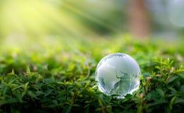 Het concept sparen de wereld sparen milieu de wereld is in het gras van de groene bokehachtergrond royalty-vrije stock foto's