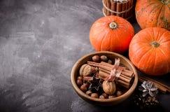 Het concept van de dalingsoogst Pompoenen, kruiden en noten in houten kom Stock Foto
