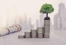Het concept van de de groeiinvestering stock afbeeldingen