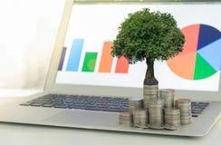 Het concept van de de groeiinvestering royalty-vrije stock afbeeldingen